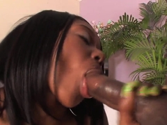 Ebony girl Baby Cakes spreads her legs and gets a black penis