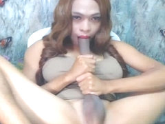 Hot Busty Shemale Self Sucking Cock