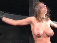 darmowe hardcore bdsm porno typy penisa