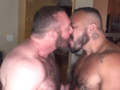 Hairy wolf cums on bears hard cock