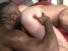 Dziewczyny przejebane przez ogromny Dick