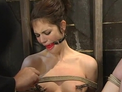 Carmen sandiego hentai pics western hentai luscious