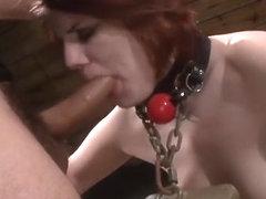 Openbare vernedering Sex Videos